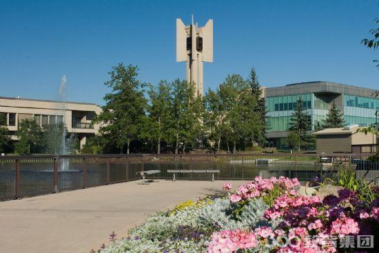 皇家山大学